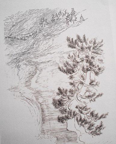 image772